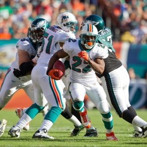 Reggie Bush of the Miami Dolphins