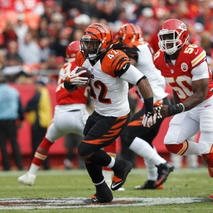 Cincinnati Bengals running back BenJarvus Green-Ellis