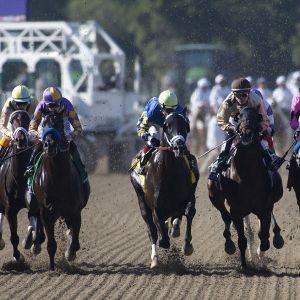 2019 Breeders Cup Juvenile Predictions And Expert Betting