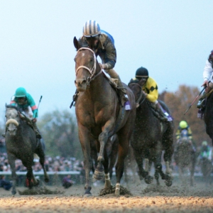 2019 Breeders Cup Classic Predictions And Expert Betting