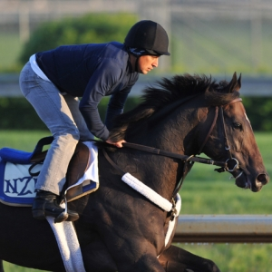 Restoring Hope Odds to Win the 2018 Belmont Stakes with Picks and