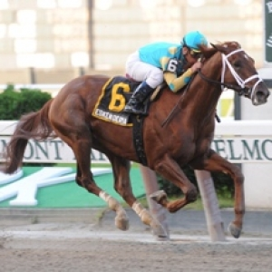 2017 Whitney Stakes Picks With Odds And Expert Betting