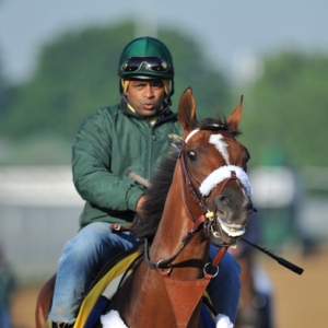 Kentucky Derby entrant Mucho Macho Man