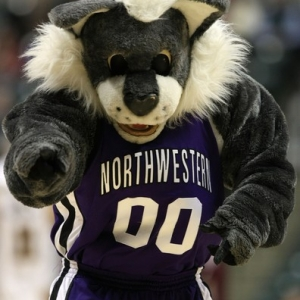 northwestern mascot