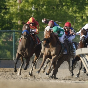 2010 Preakness Stakes