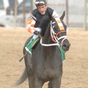 Jockey Ramon Dominquez