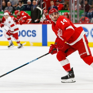 robby fabbri detroit red wings