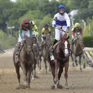 Shackleford, the Preakness Stakes Winner