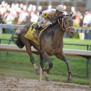 Kentucky Derby winner Super Saver