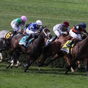 Tepin, racehorse