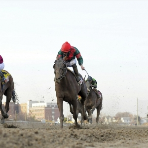 Belmont Stakes Expert Handicapping Fresh Horses In 2017