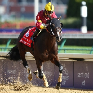2019 Breeders Cup Sprint Predictions And Expert Betting Picks
