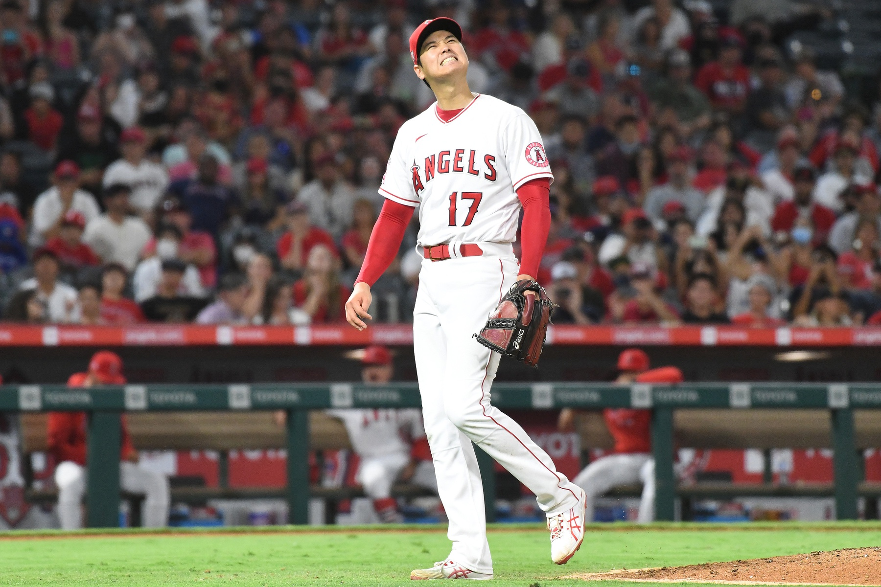 Houston Astros vs Los Angeles Angels Prediction, 8/14/2021 MLB Pick, Tips and Odds