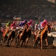Breeders' Cup Blind Luck