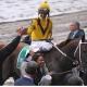 Curlin, race horse