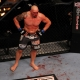 UFC fighter Junior dos Santos