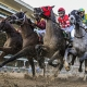 New Jersey to offer fixed odds horse racing bets