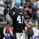 Roman Harper, safety for the Carolina Panthers
