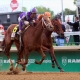 Belmont Stakes entrant Unlimited Budget