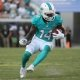 Jarvis Landry Miami Dolphins